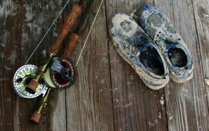 Rybářské pruty a náčiní: jakým způsobem se ošetřují