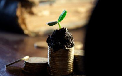 Jak ušetřit co nejvíce peněz? Začněte u výběru pro vás té nejlepší banky!
